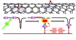 Carbon Nanotubes Give Two Excitons for the Price of One