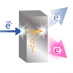 Polarized Partners: Spinning Electrons Yield Spinning Positrons