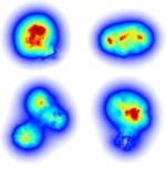 "Modeling the ""Flicker"" of Gluons in Subatomic Smashups"
