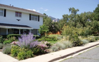 Landscaping water conservation department of energy for Water saving garden designs