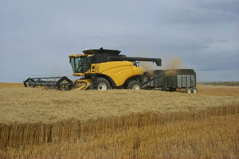 Photograph of yellow and black combine harvester harvesting wheat. Courtesy of Idaho National Laboratory