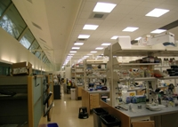 photo of a university laboratory, showing recessed troffers in the ceiling above