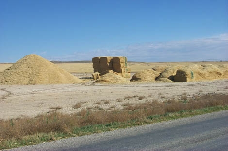 Photograph of three types of feedstock: pile, stack, and bales. Courtesy Idaho National Laboratory