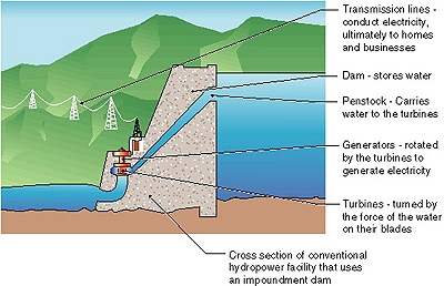 Drawing showing a cross section of an impoundment dam and hydropower plant. Transmission lines conduct electricity to homes and businesses. Dam stores water. Penstock carries water to the turbines. Generators are rotated by the turbines to generate electricity. Turbines are turned by the force of the water on their blades.