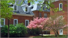 Photo of University Park brick townhomes with nearby flowering trees.