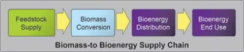 Biomass-to Bioenergy Supply Chain