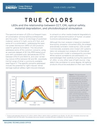 true-colors-technical-brief-image.jpg