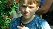 Photo of a child holding a butterfly.