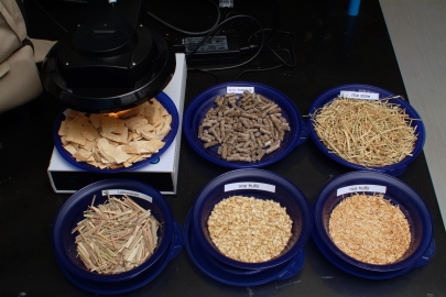 Rice hulls and other samples used for demonstrating the capabilities of the Energy Department's National Renewable Energy Laboratory (NREL) Rapid Biomass Analysis System. Researchers have found a way to produce silicon structures for lithium-ion batteries using rice husks. | Photo courtesy of NREL