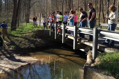 Students from Carla Evans' Advanced Environmental Science class at Waverly High School visit Lake Hope State Park as part of educational activities included within the Ohio University Student ASER Summary Project. The summary will be distributed to stakeholders in the region this fall.