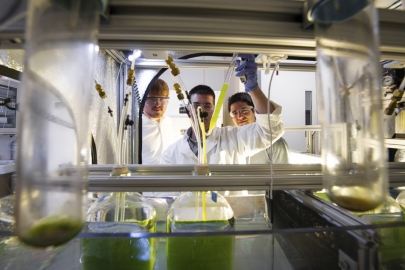 The Algae Technology Education Consortium (ATEC) is developing opportunities for education and training for next-generation jobs in the algal industry.   <em>Photo courtesy of ATEC</em>