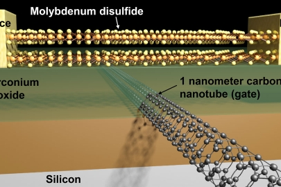 Scientists created the smallest transistor ever using molybdenum disulfide and a carbon nanotube. |  Schematic image courtesy of Sujay Desai/UC Berkeley.