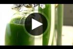 Energy 101 | Algae-to-Fuels