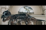 The Field Museum brings T-Rex Arm to Argonne