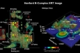 Shown here are high-resolution, three-dimensional ERT images of contaminant distribution