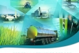 Biomass Resource Basics