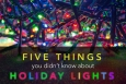 "With a fiery past and a bright future, here are 5 things you probably didn't know about holiday lights. | Graphic by <a href=""/node/379579"">Sarah Gerrity</a>, Energy Department."