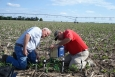 At the University of Nebraska-Lincoln, state energy and extension staff are teaching farmers to use modern sensors to improve irrigation management. In this picture, Darrel Siekman and Gary Zoubek install Watermark Sensors and a data logger.   Photo courtesy of the University of Nebraska.