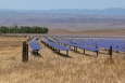 In September 2011, the Department of Energy issued a $1.2 billion loan guarantee to support the construction of California Valley Solar Ranch (CVSR), a 250 MWac photovoltaic (PV) solar generating facility in rural San Luis Obispo County, California. The project reached commercial operation in October 2013.