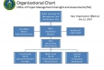 IEA Organizational Chart