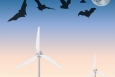 Energy Department Announces New Projects to Help Protect Wildlife at Wind Energy Plants