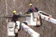 58,000 workers are currently repairing power lines across the Mid-Atlantic in the aftermath of Hurricane Sandy.   Photo courtesy of the Energy Department