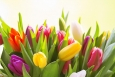 Delivering flowers is one of many ways to brighten your mom's day next weekend. | Photo courtesy of ©iStockphoto.com/Moncherie