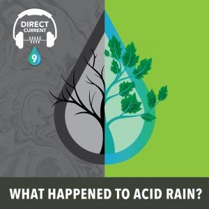 What Happened to Acid Rain.jpg