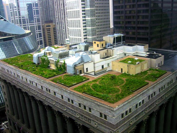 The roof of the 12-story Chicago City Hall building has been retrofitted with a 22,000 square-foot rooftop garden to reduce urban air temperature. | Credit: Katrin Scholz-Barth