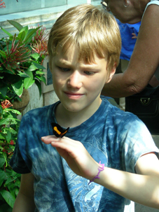 Photo of a young boy outdoors looking at a butterfly on his hand.