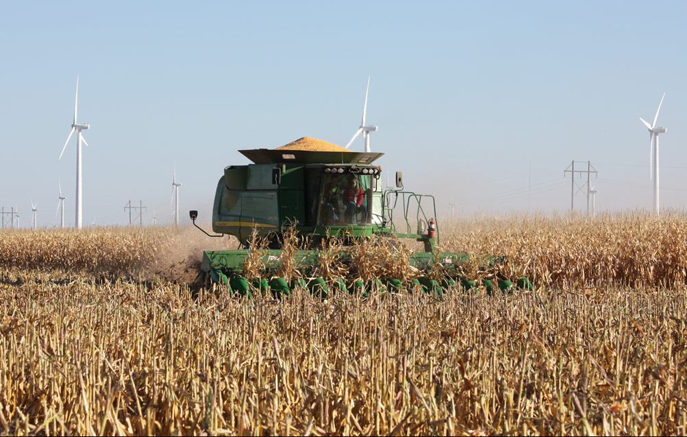 Photo of a green combine machine harvesting a corn field. A blue sky and three wind turbines are in the background.
